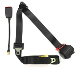 "3 Point, Retractable Lap and Shoulder Belt with 12"" Cable Buckle"